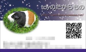 blogcard.JPG