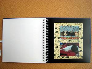 book 02.jpg