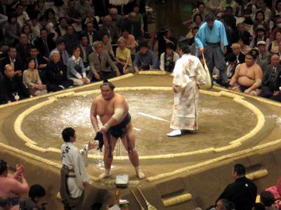 sumo 03.jpg